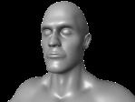 bodyHead